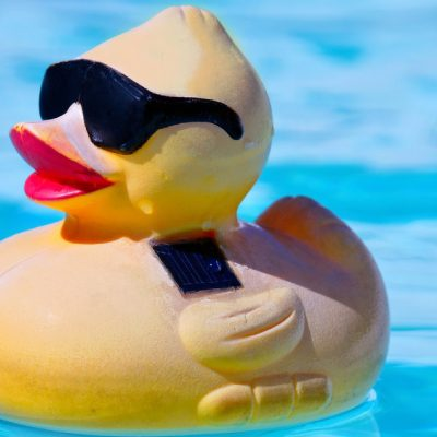 A Cute Little Toy Duck Wearing Sun Glasses Floating On The Pool.